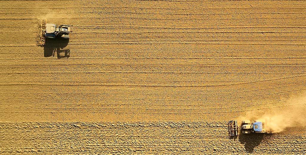 Comunidad humana y mundo rural: una relación necesariamente sustentada por valores éticos